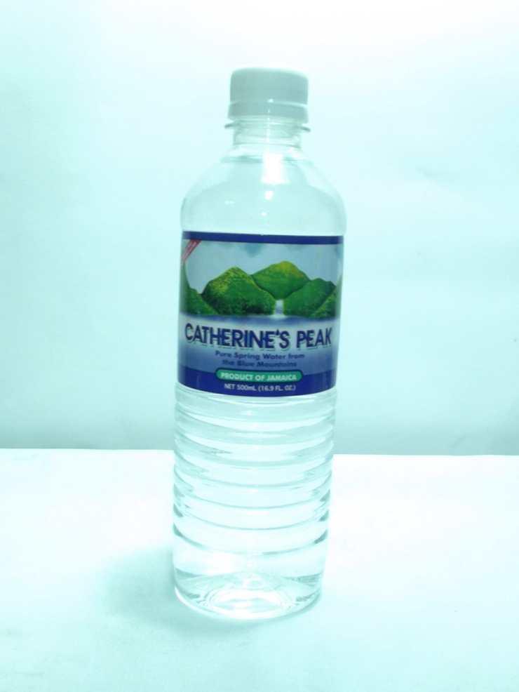 Catherine S Peak Spring Water 500ml Grocery Shopping